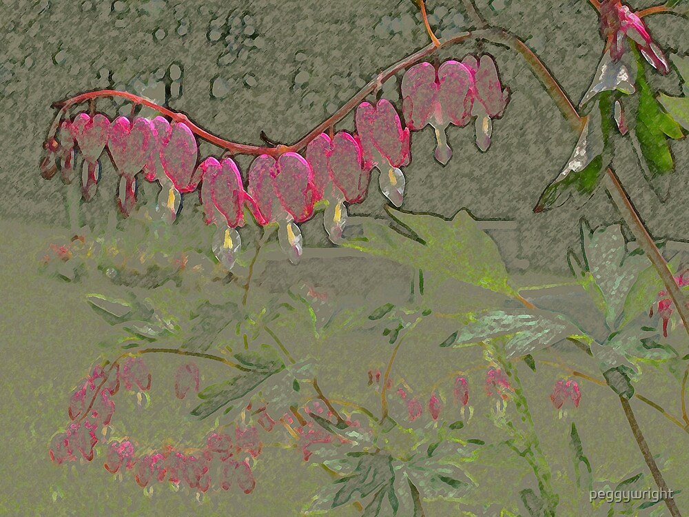 bleeding hearts by peggywright