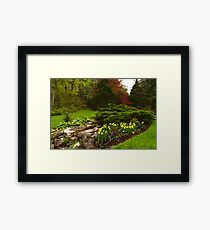 New Leaves and Flowers - Impressions Of Spring Framed Print