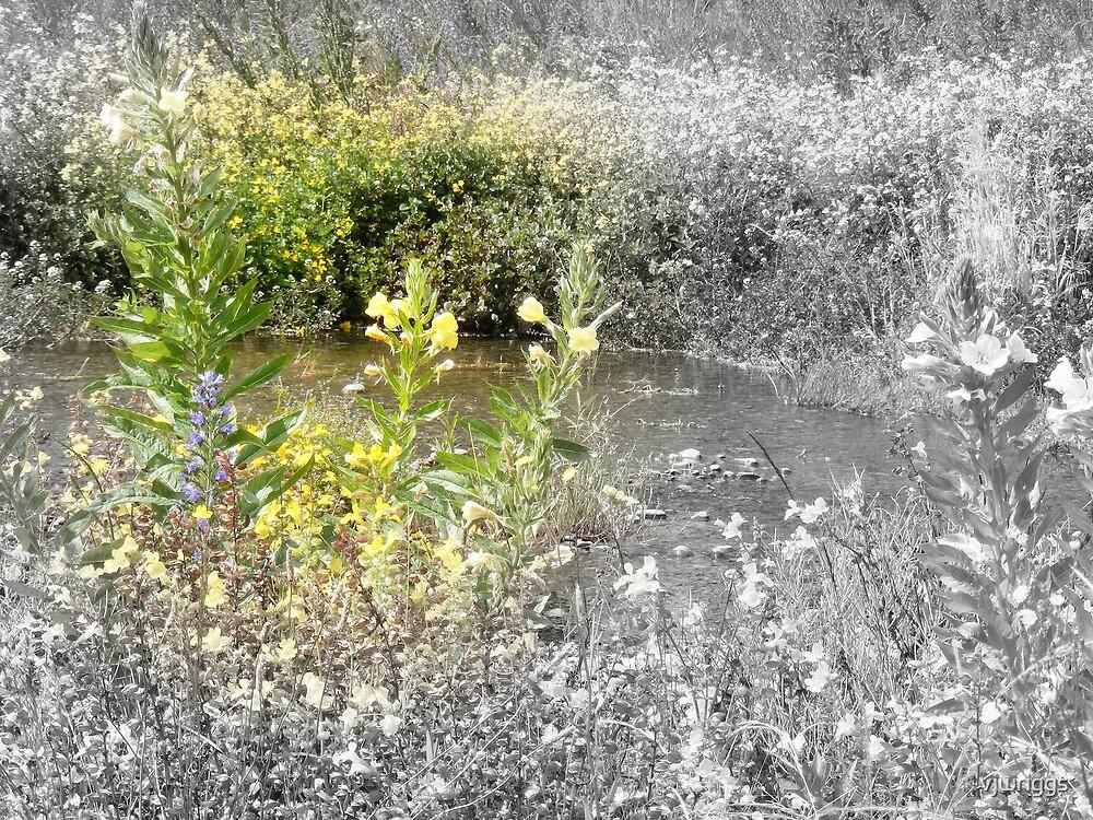 Yellow Creek by vjwriggs