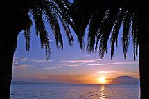 Sunset under the palms by Arie Koene
