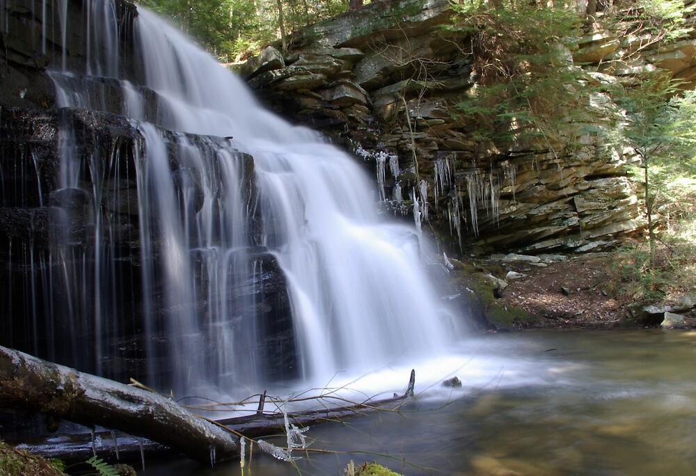 Rosencrans Waterfall by Jamie  Fox
