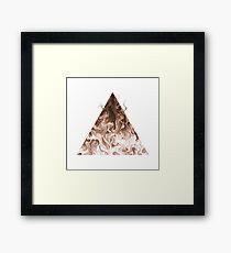 Elemental Alchemy: Fire (colour) Framed Print
