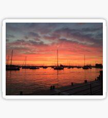 Newport Rhode Island harbor  Sticker