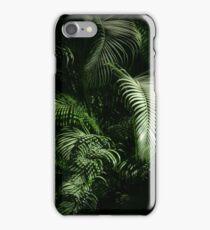 winter light on the jungle - luz del invierno en la selva iPhone Case/Skin