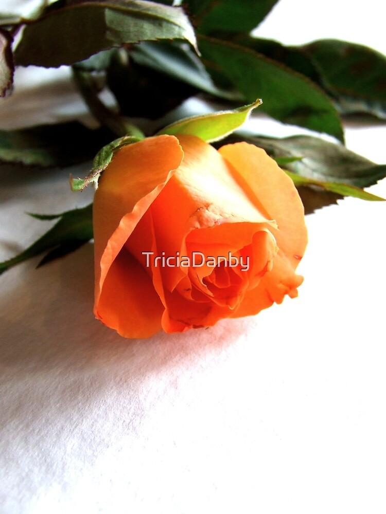 I love you vigorously by TriciaDanby