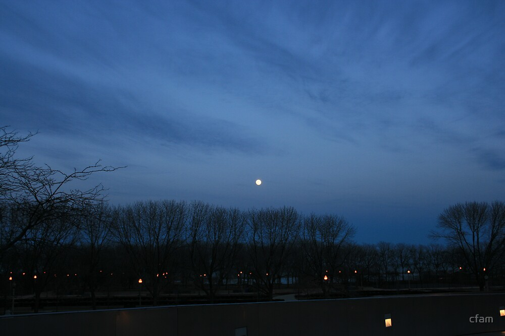 Full Moon Rising by cfam