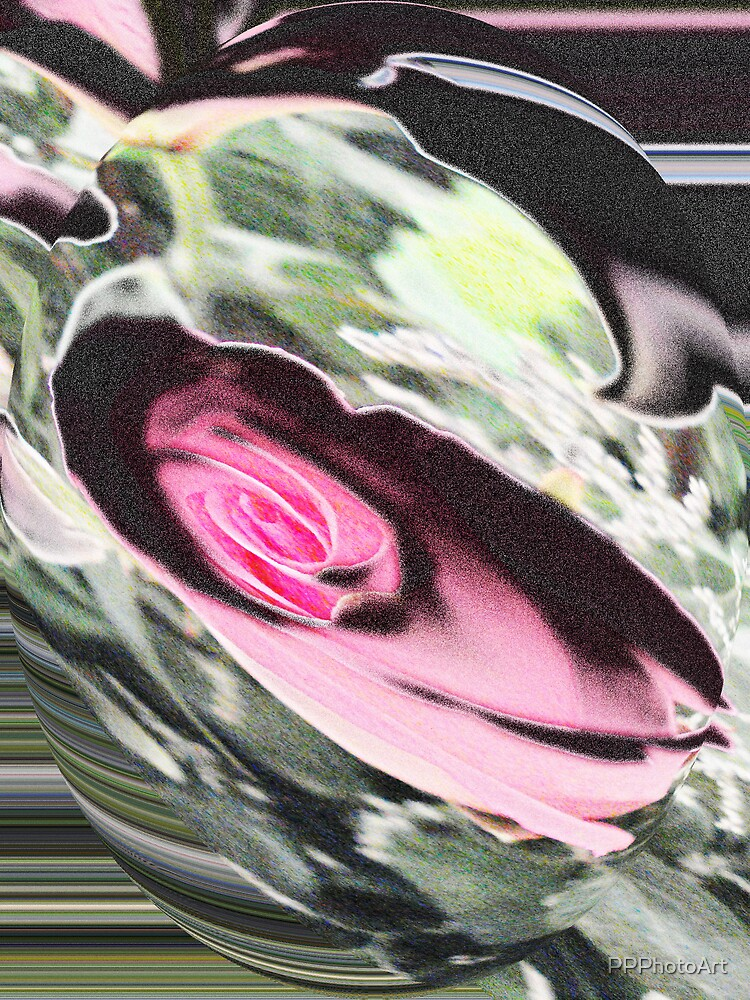 Rose art by PPPhotoArt