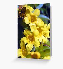 Sunshine in bloom Greeting Card