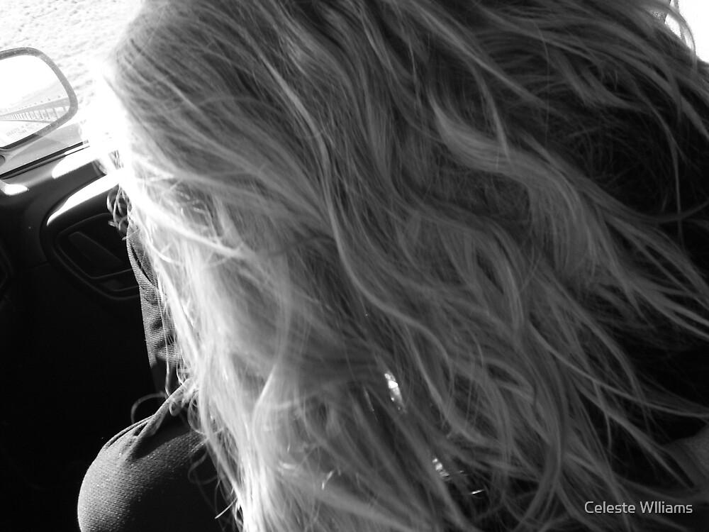 hiding by Celeste Wlliams