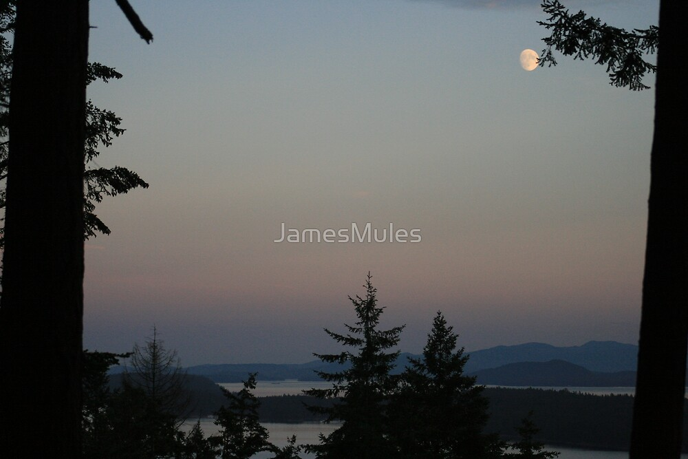 Bad Moon Rising by JamesMules