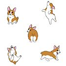 Frolicking Corgis by PersonalGenius