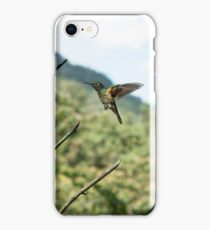 Hummingbird chases insect iPhone Case/Skin