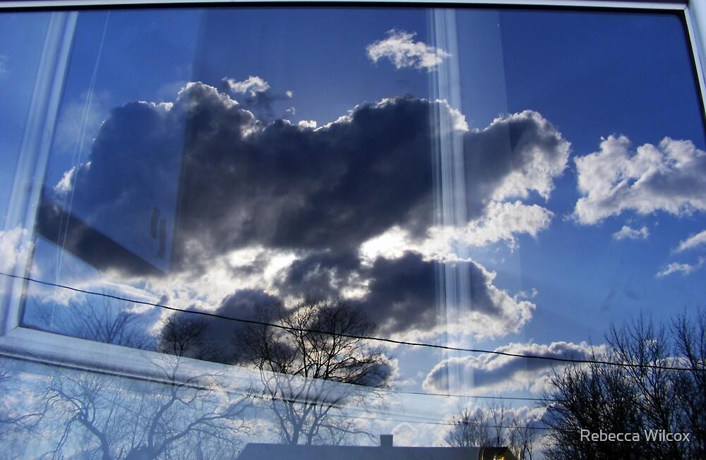 Reflections by Rebecca Brann