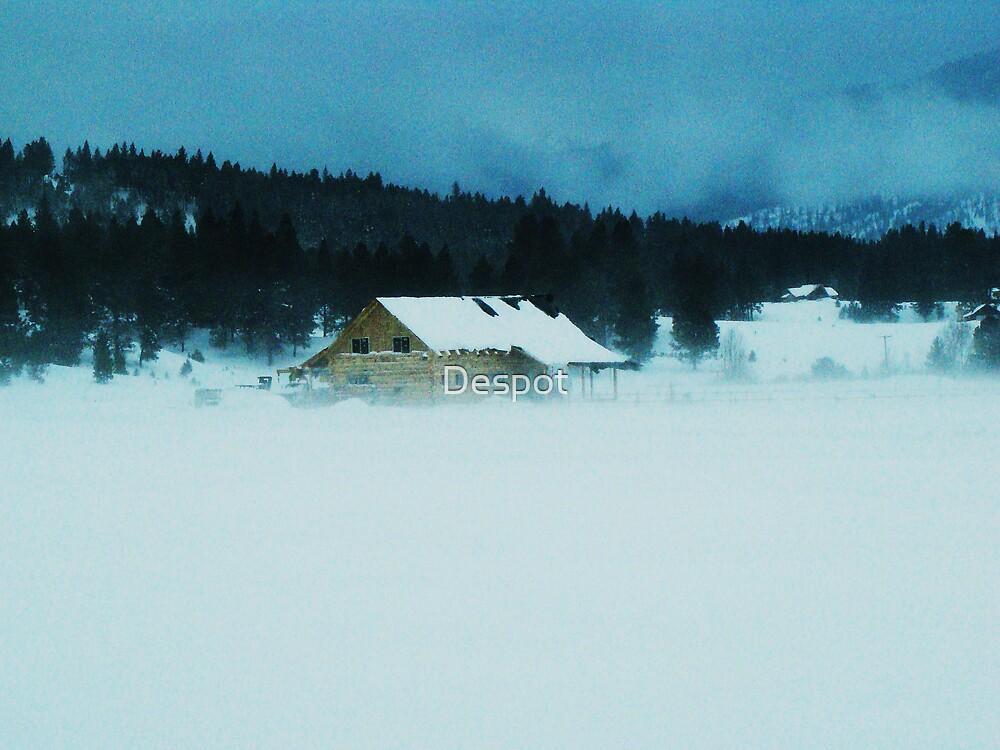 Snow Field by Despot