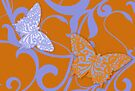 Flying Colors Tangerine and Violet by mindydidit
