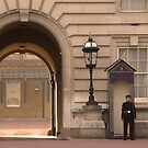 Guard, Buckingham Palace by APhillips