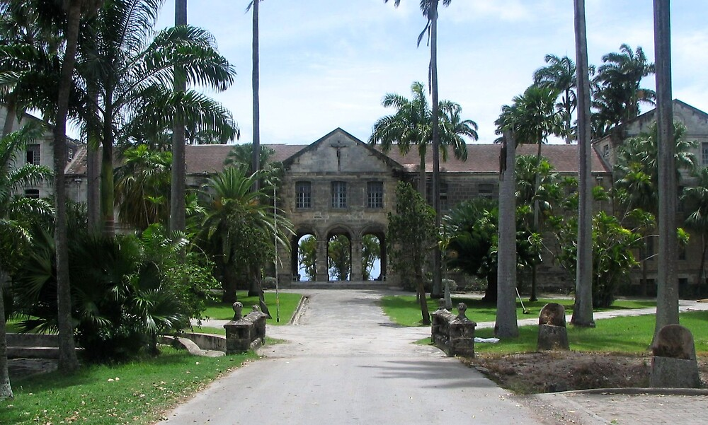 Codrington College by Michael Morris