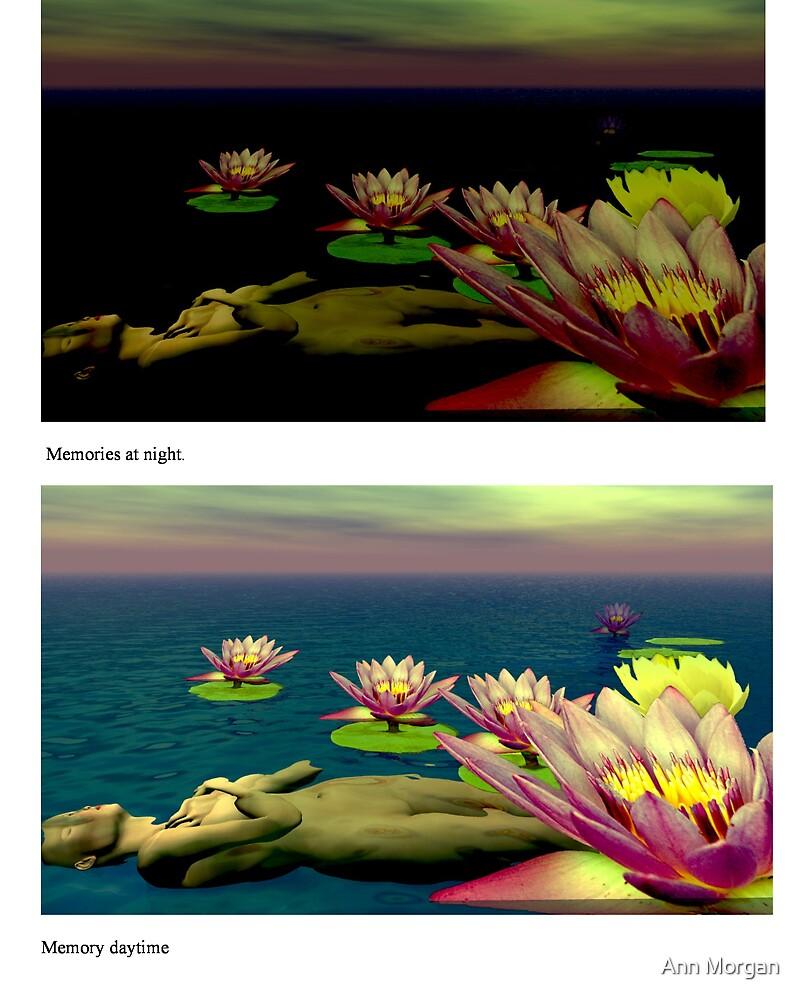 Night or Day: Memory by Ann Morgan