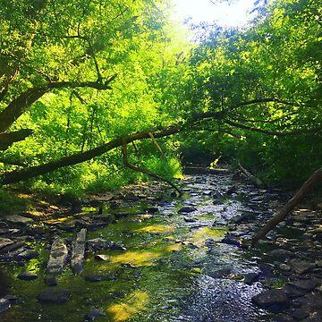 ' Stream ' by mariastrick