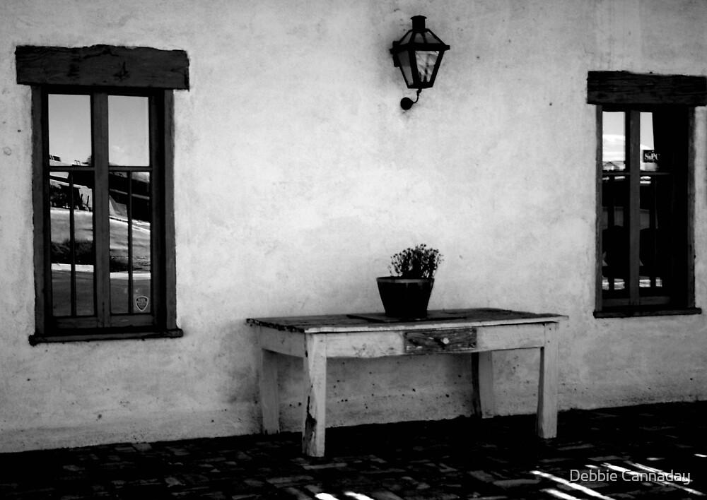 Black & White Siesta by Debbie Cannaday