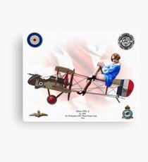 Airco DH. 2 Canvas Print