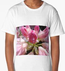 Delicate Pink Long T-Shirt