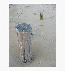 sandhill Photographic Print