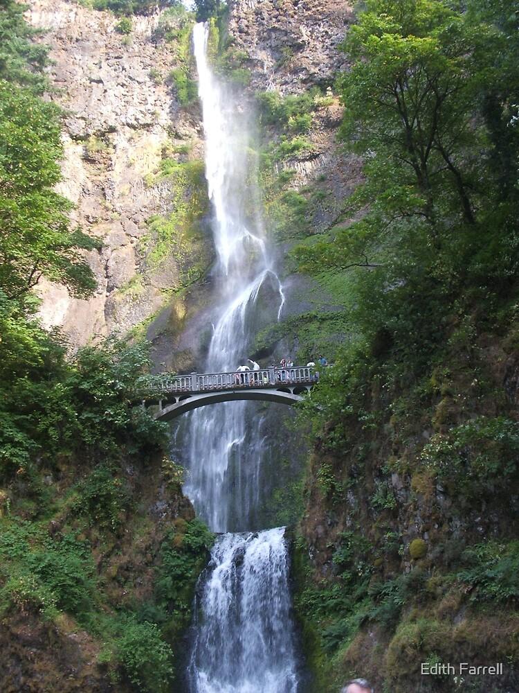Multnomah Falls by Edith Farrell