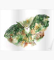 Spring Owl Poster