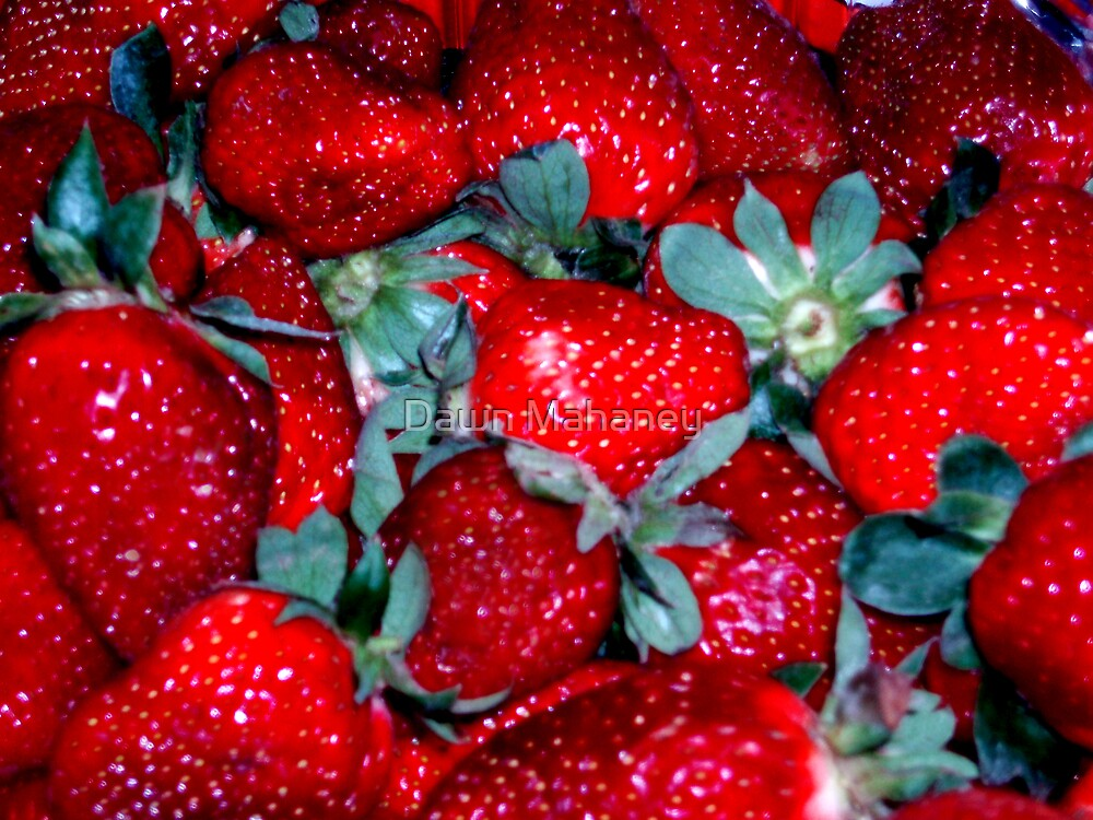 Strawberries by Dawn Mahaney