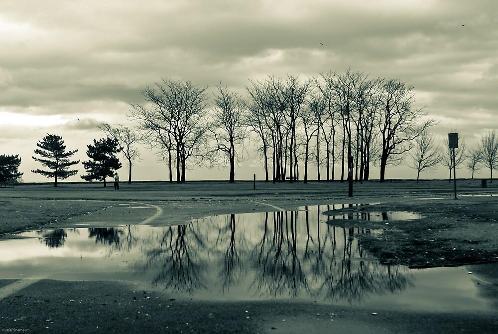 reflection. after the rain. by rafaj