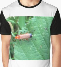 Soldier Beetle Graphic T-Shirt