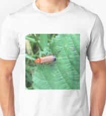 Soldier Beetle T-Shirt