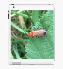 Soldier Beetle iPad Case/Skin