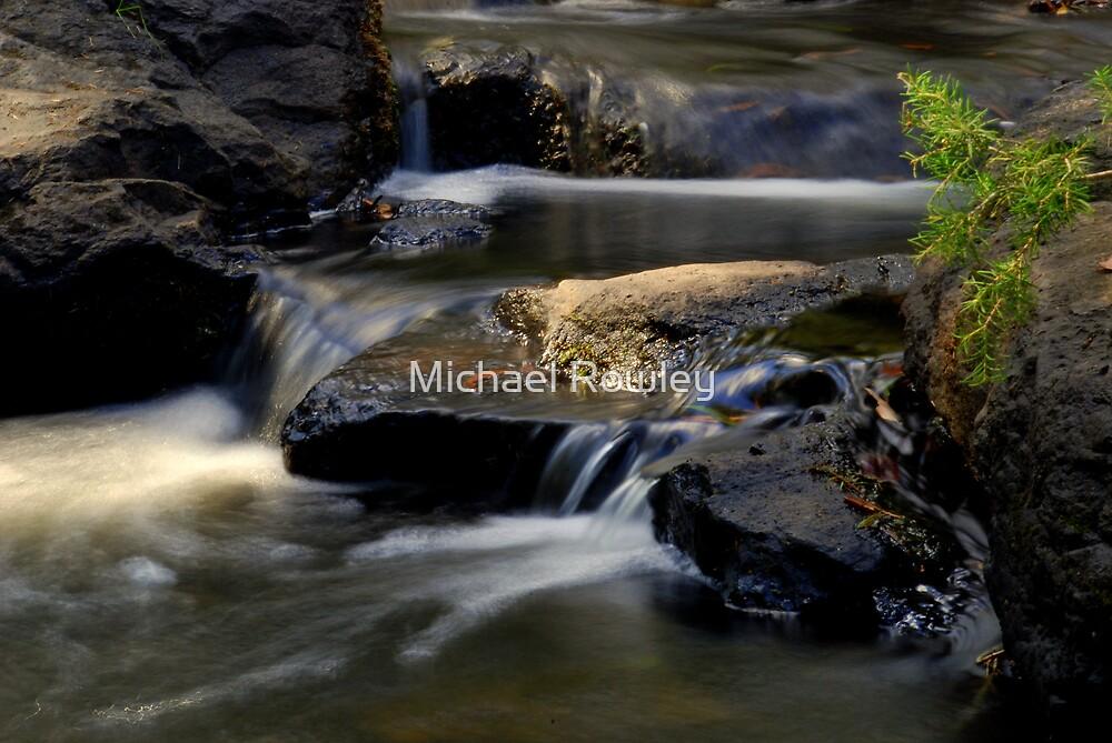 Rosebud Stream 2 by Michael Rowley