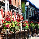 The Highlander Pub, William St., Ottawa, ON Canada by Shulie1