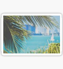 Palm Trees from the Bay Sticker