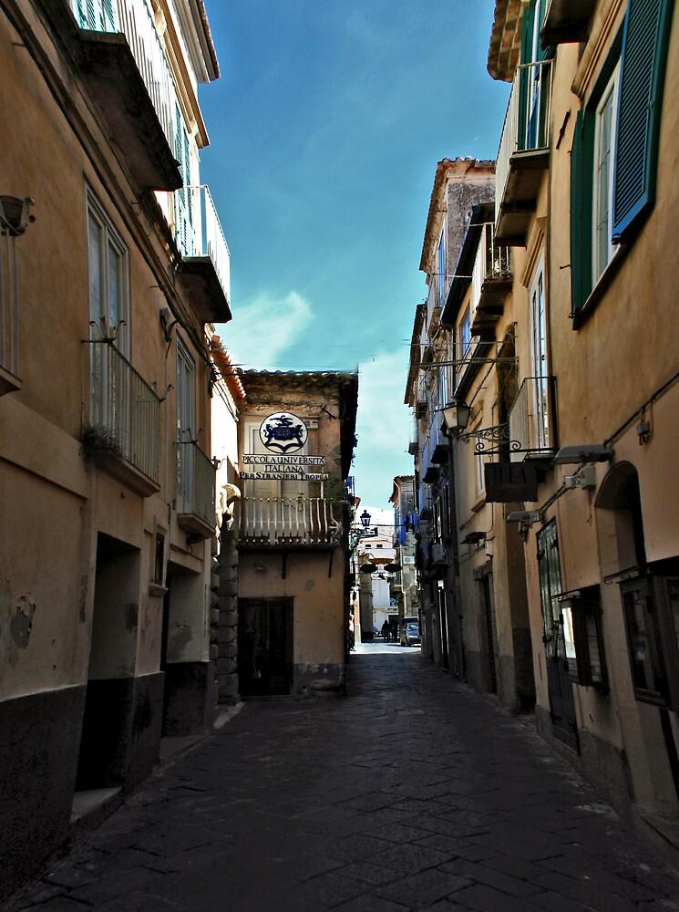 Piccolo Universita Italiana alleyway by BizziLizzy