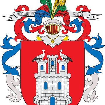 Coat of Arms of Irun by Tonbbo