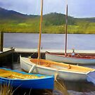 Little Boats on the Huon by wallarooimages