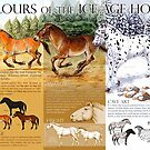 Colours of the Ice Age Horse by Pip Abraham