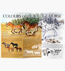 Colours of the Ice Age Horse Poster