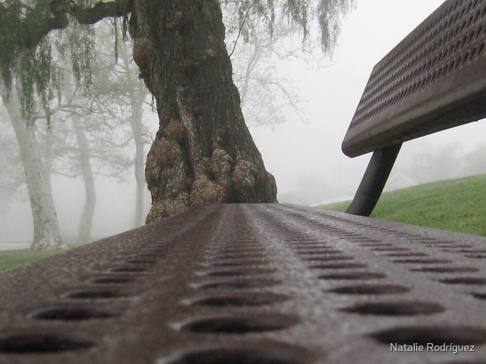 Have a Seat? by Natalie Rodríguez