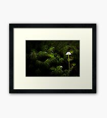 Fungi duo Framed Print