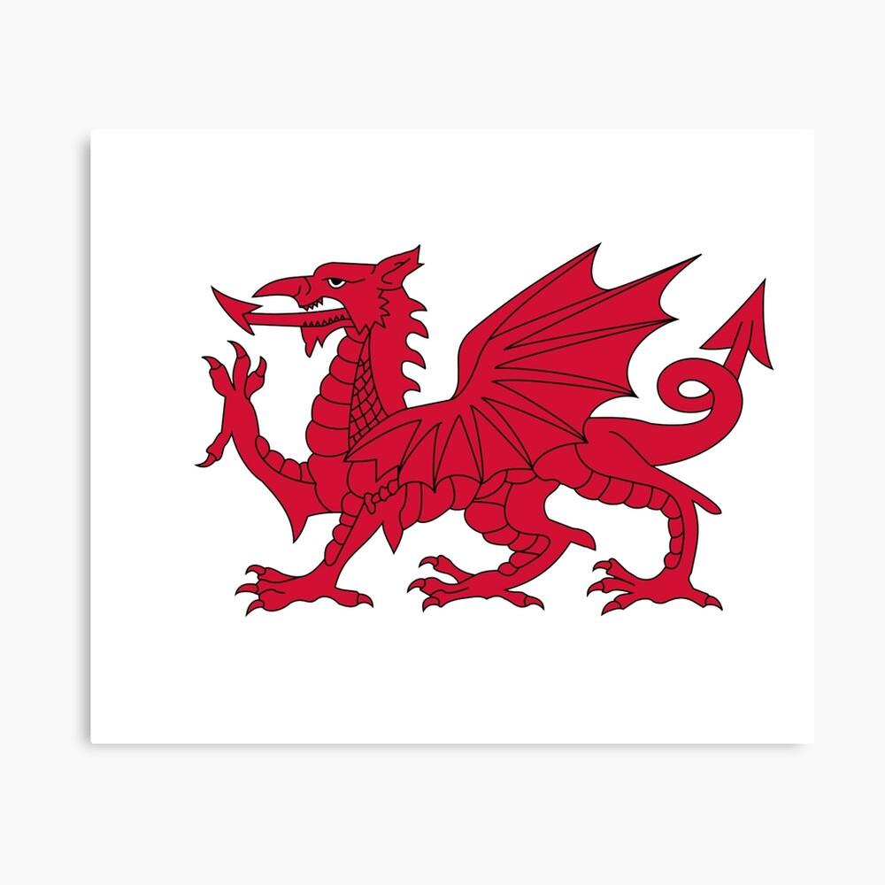 Red Welsh Dragon Flag Of Wales Sport T Shirt Sticker Bedspread