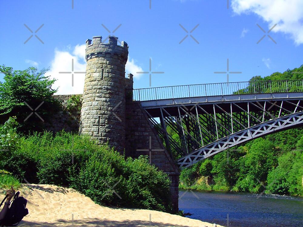 Craigellachie Bridge III by Tom Gomez