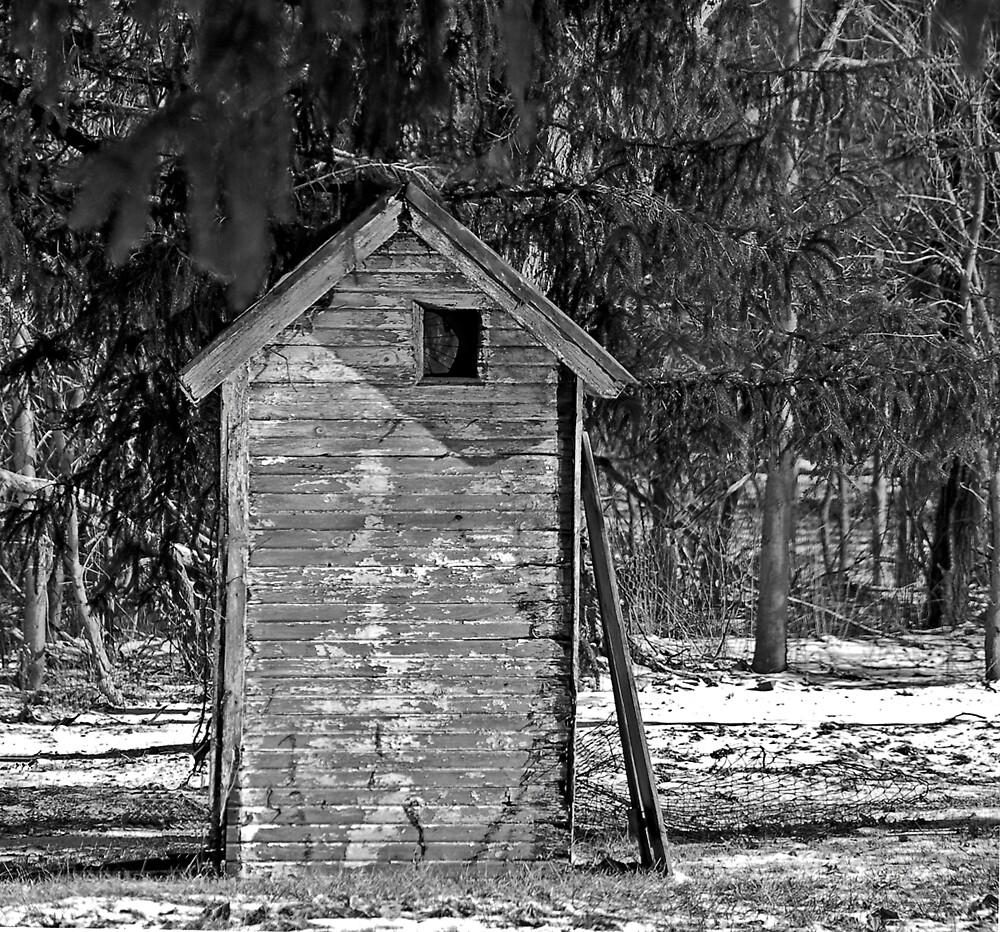 Where's the Door? by terrylazar