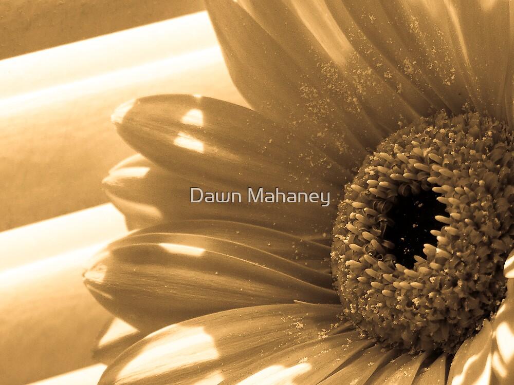 Sepia Flower by Dawn Mahaney