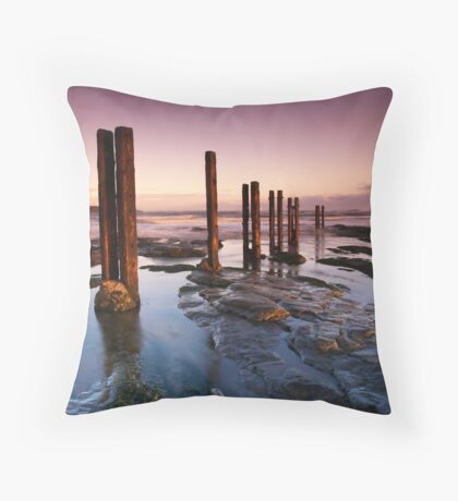 Old Wooden Posts Throw Pillow