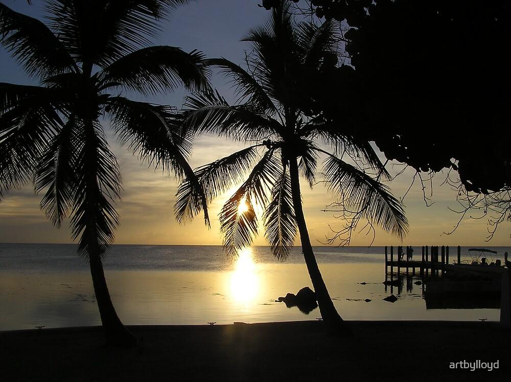 Sunset Palms by artbylloyd